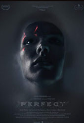 perfect movie poster vod