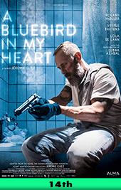 bluebird in my heart movie poster vod