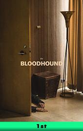 bloodhound movie poster vod