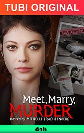 meet marry murder movie poster vod tubi